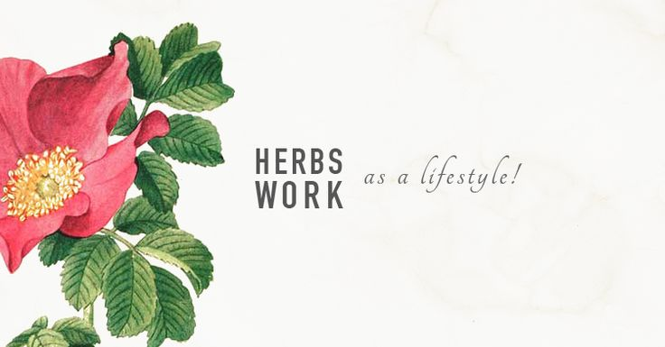Herbs work, but they work best if we do a little work, too! In order for us to receive the most benefit from the herbs we use, we need to focus on right living –on developing a lifestyle that allo...