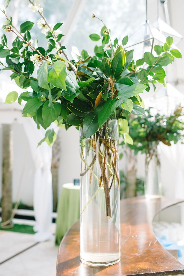 Stephanie Gibbs did a fabulous job on all of the florals! Tall greenery branches arrangements in clear cylinder vase on white bar. Party for The Knot. Event Design and Coordination: Mac & B. Events macandbevents.com Florist: Stephanie Gibbs Events stephaniegibbsevents.com Photography: Aaron and Jillian Photography aaronandjillian.com