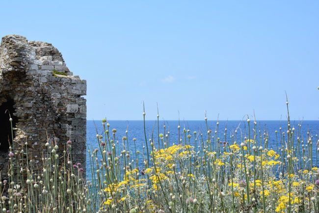 Από το thepaperboat.gr - Μεσσηνία η πράσινη και γεμάτη μυρωδιές γωνιά της Πελοποννήσου http://bit.ly/2xZlAur Στο Νότιο άκρο της Πελοποννήσου θα έχεις την ευκαιρία να αναζητήσεις καστροπολιτείες και μυθικές διαδρομές θα γεμίσεις την ψυχή σου με όλων των ειδών τα χρώματα της φύσης και θαγευτείς τοπικά εδέσματα και φρούτα με μυρωδιές που (αν είσαι παιδί της πόλης) θα έχεις από καιρό ξεχάσει!Στη Μεσσηνία θα βρεις επίσης πολλές και όμορφες παραλίες άλλες με αμμουδιά και άλλες με βότσαλο…