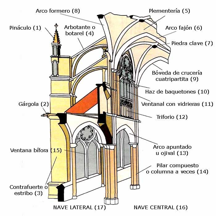 Elementos estructurales de una catedral gótica.