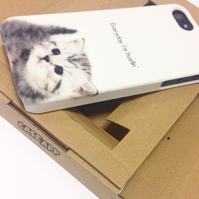 Every day kittens!! From @caseapp! Design your own #custom #iphonecase, #samsungcase or #skin at caseapp.com | se | no | dk | fi | de | co.uk | nl