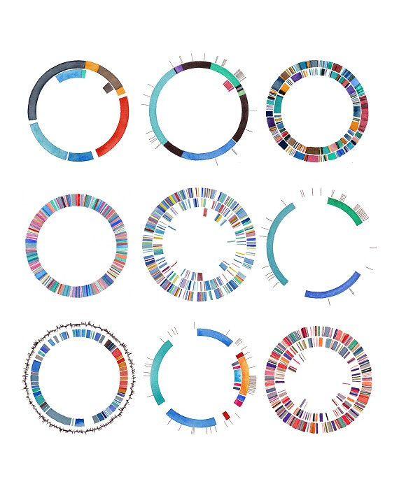 Plasmids/DNA art, watercolor print. I'm in love.