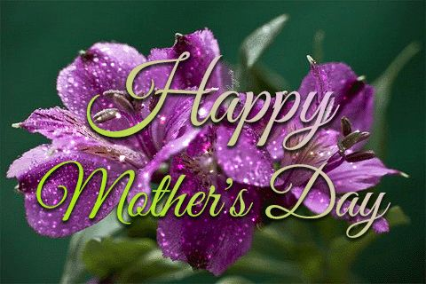 Happy Mother's Day! Mom Pflaum I hope you Enjoy your day! ❤️💐