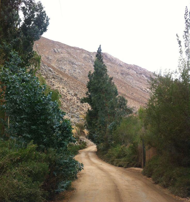 Alcohuaz, Elqui Valley, Chile