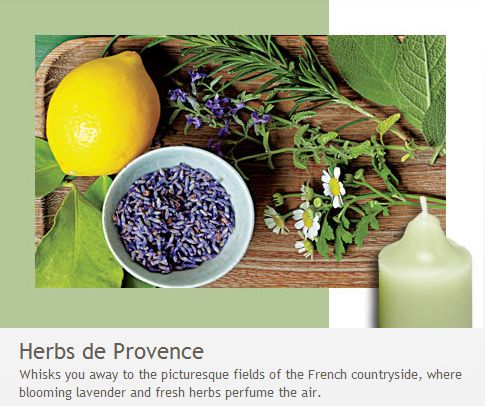 Herbs de Provence: Whisks you away to the picturesque fields of the French countryside, where blooming lavender and fresh herbs perfume the air.