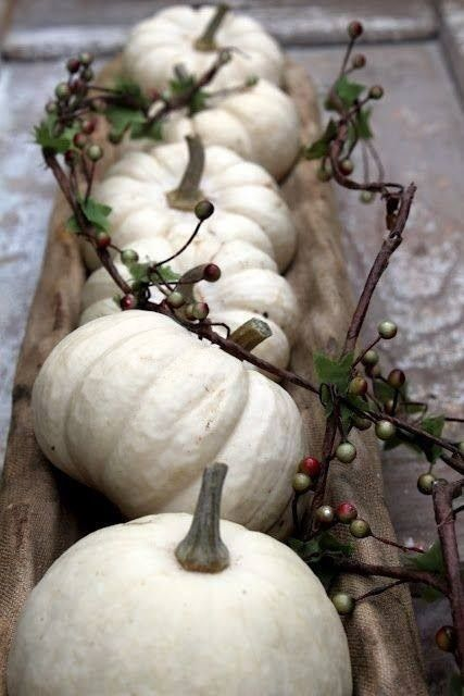 white pumpkin centerpiece for thanksgiving