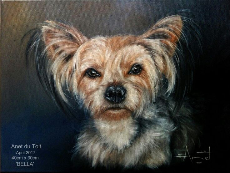 Yorkie painting. Oil on canvas. Commissioned.  #dog #yorkie #Yorkshire #pet #portrait #cute
