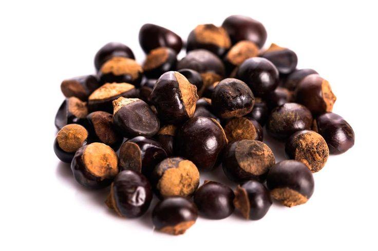 Nabijte se energií Přírodní kofeinem nabitá tableta Ramissio Energy je kombinací guarany a macy, vzácných rostlin z amazonských pralesů. Jejich účinky objevili už jihoameričtí indiáni, pro které byly rostliny zdrojem čisté energie, síly a vytrvalosti. Mimo jiné posilují imunitu, pomáhají proti chudokrevnosti, pomáhají v období menopauzy nebo při problémech s řídnutím kostí. Obsah kofeinu je několikanásobně vyšší než v kávových zrnech, proto působí proti únavě, zvyšují schopnost soustředění a…