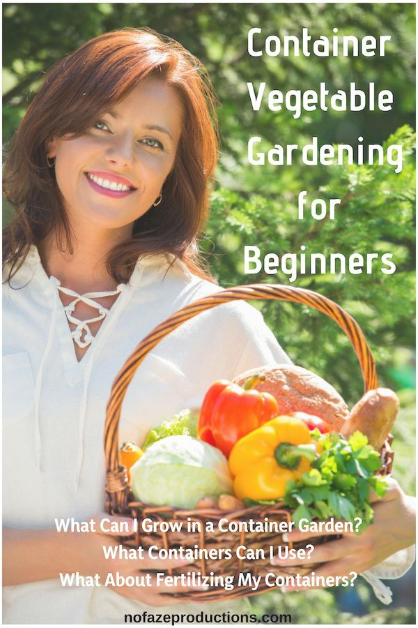 Growing Vegetables In Containers For Beginners Growing Food