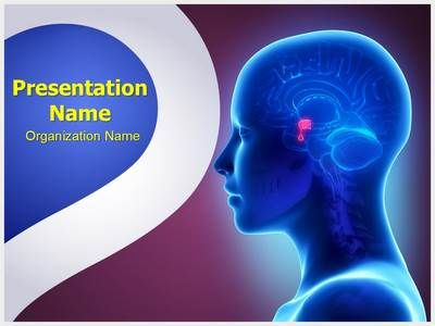 20 best brain powerpoint presentation templates backgrounds images brain pituitary gland powerpoint presentation template is one of the best toneelgroepblik