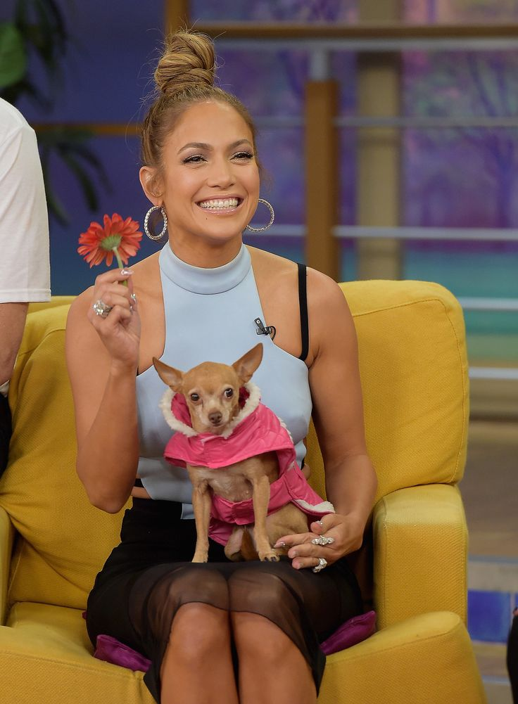 Jennifer Lopez went to promote The Boy Next Door at Miami's Despierta America on Tuesday.