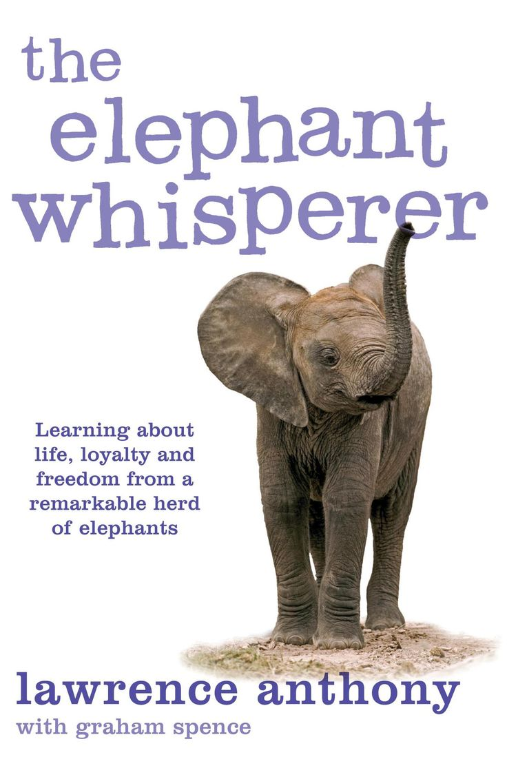 The Elephant Whisperer By Anthony Lawrence  Lawrence Anthony's Story Of  This Elephant Herd Ispelling  If You Are An Animal Lover, Especially  Exotic