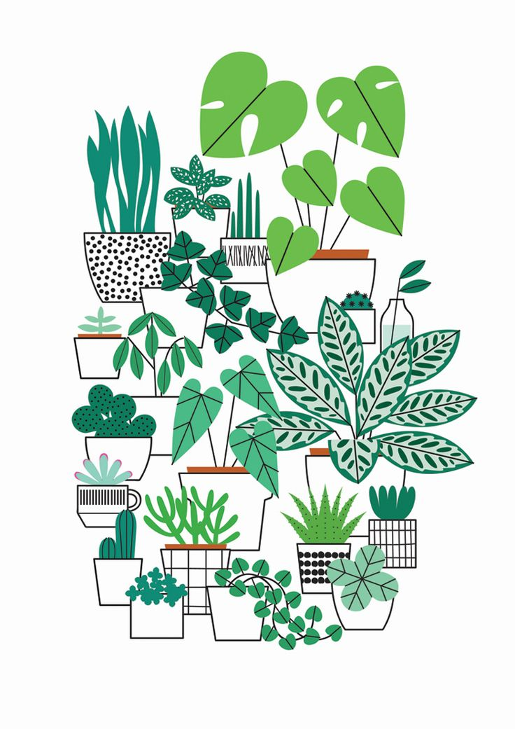 house plants drawing. houseplants print by watersounds on etsy house plants drawing