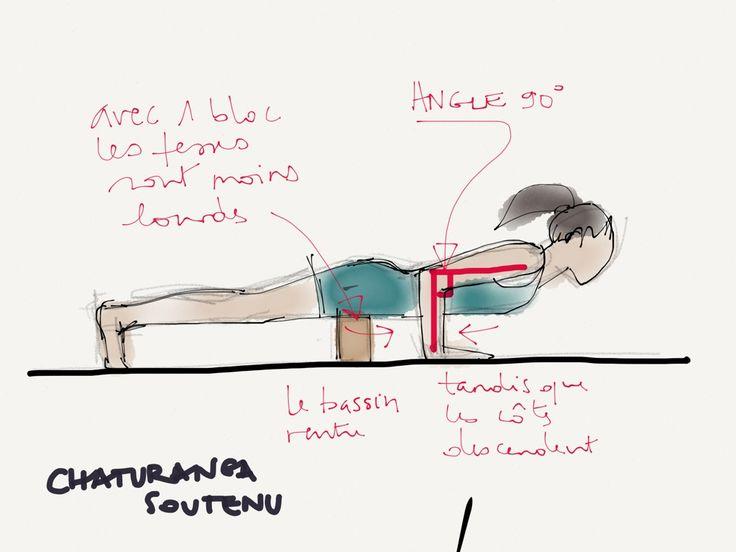 Iyengar yoga notes - notes de formation