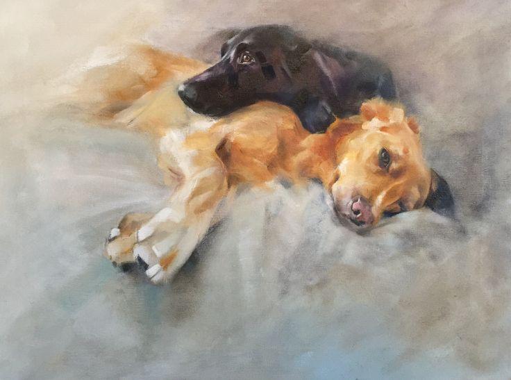 Pet portraits by Julie Brunn