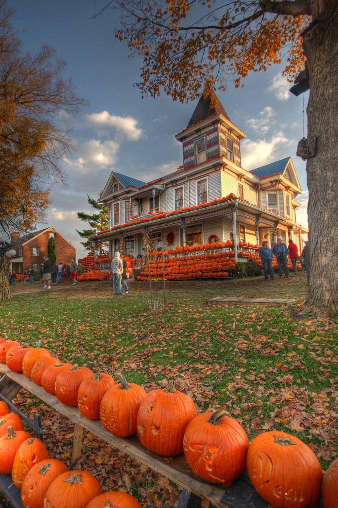 Pumpkin house!