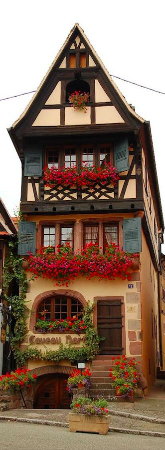 Adorable! Architecture, colors, dimensions... Caveau Nartz restaurant in Dambach-la-Ville, Alsace, France