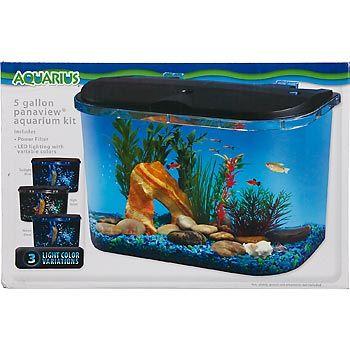 8 Best Axolotl Stuff Images On Pinterest Fish Aquariums