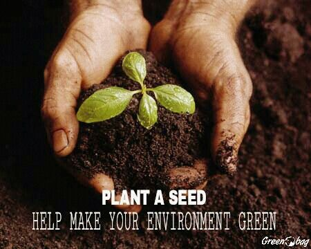 #Plant seeds in your #environment and make your surroundings #green #GreenoBag