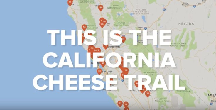 Explore the California Cheese Trail. A website and interactive map that connects people to the cheesemakers, their tours, cheesemaking classes and cheese events throughout California.