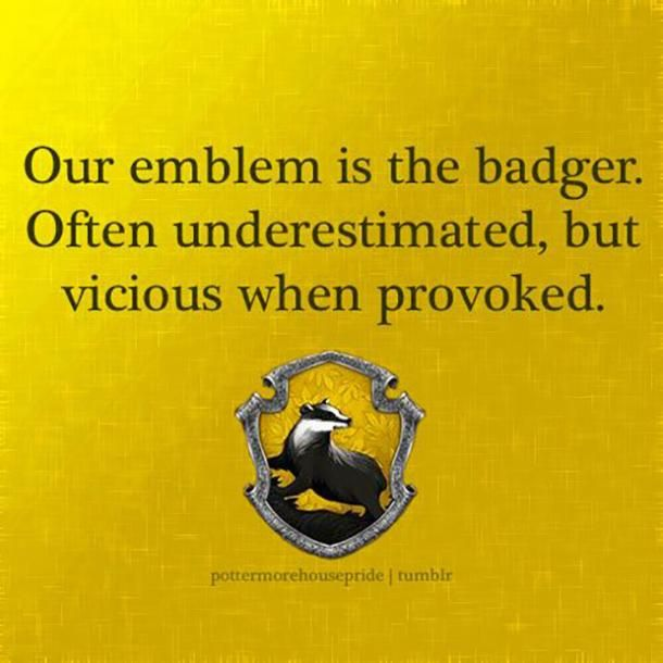 20 Funny Hufflepuff Memes Harry Potter Quotes To Celebrate Hufflepuff Pride Day Harry Potter Quotes Hufflepuff Pride Hufflepuff