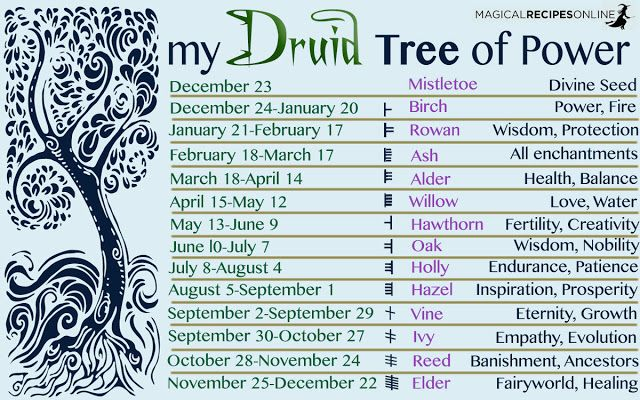 The Way of the Trees, the Druid's Calendar: What's your Tree of Power?