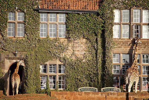 8 wacky hotels from around the world