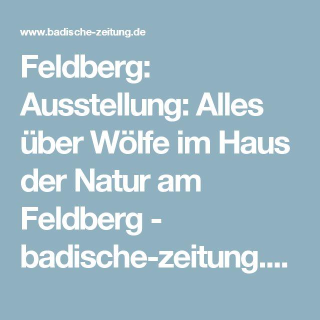 Feldberg: Ausstellung: Alles über Wölfe im Haus der Natur am Feldberg - badische-zeitung.de