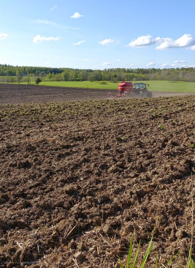 The neighbourhood farmer in the Southern part of Finland has started his spring work at the end of May: harrowing and sowing.
