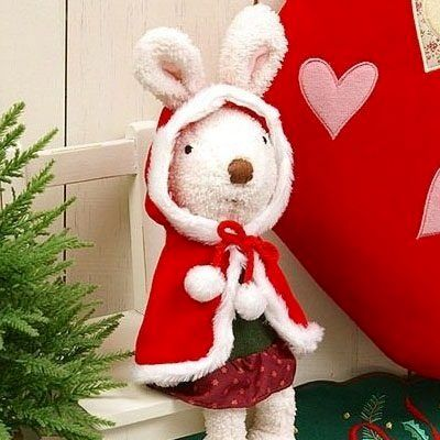 Do you want a rabbit for Christmas?