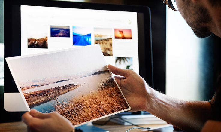 Free Background Pictures for WordPress Websites That Will Captivate Your Audience