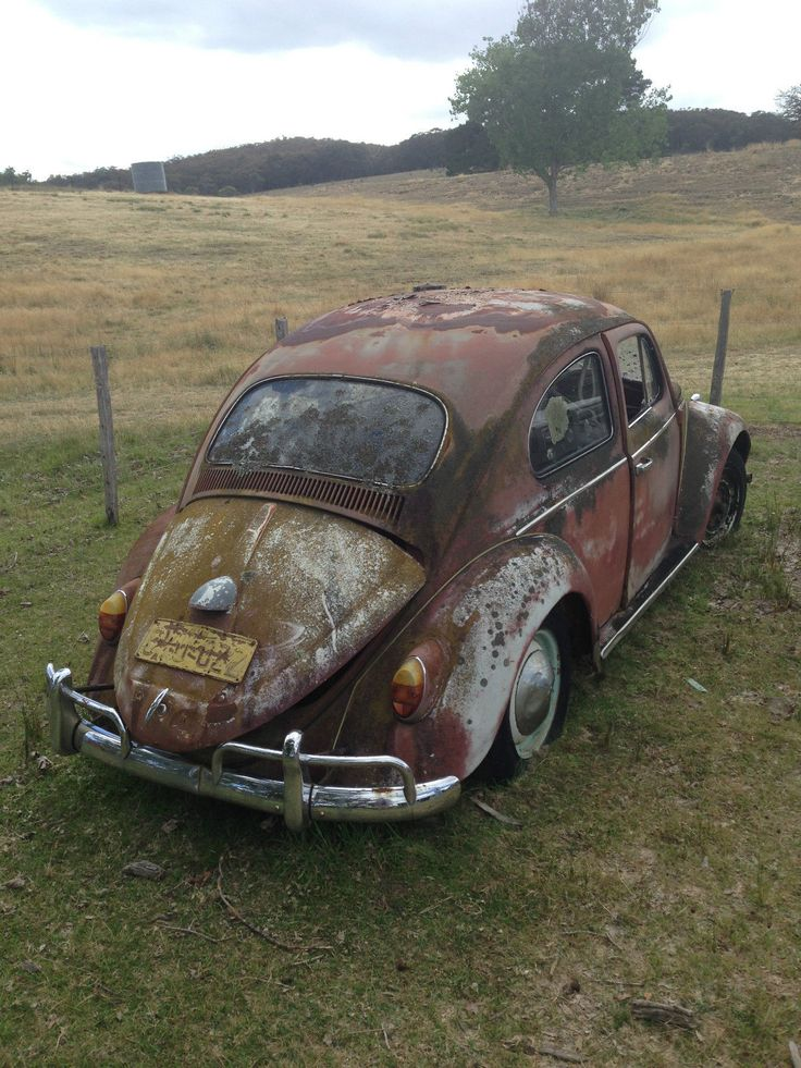 Rusty old Bug