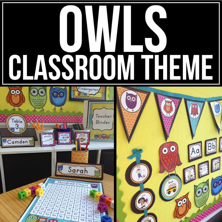Classroom Ideas With Owls : Best owl classroom theme ideas and decor images on