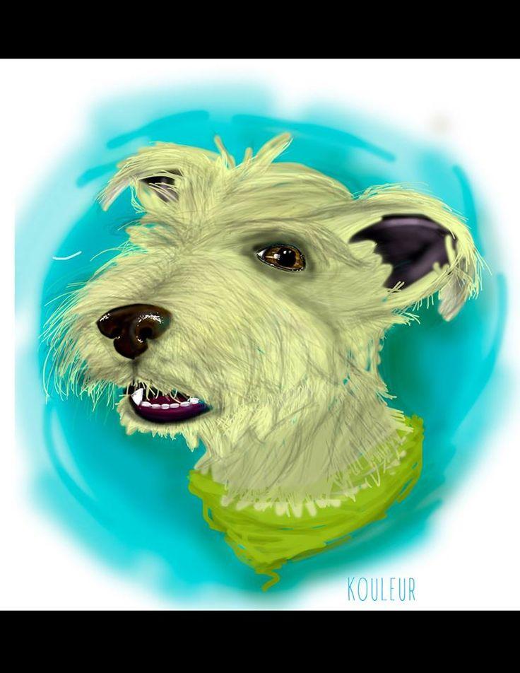 #remember #dog #love #argus #illustration #pet #animals #miss