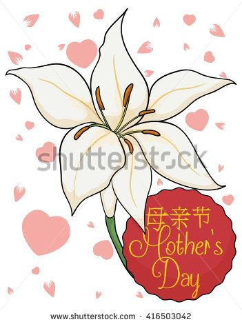 Greeting card with white lilium, pink cherry petals, hearts and red sign to celebrate chinese Mother's Day.