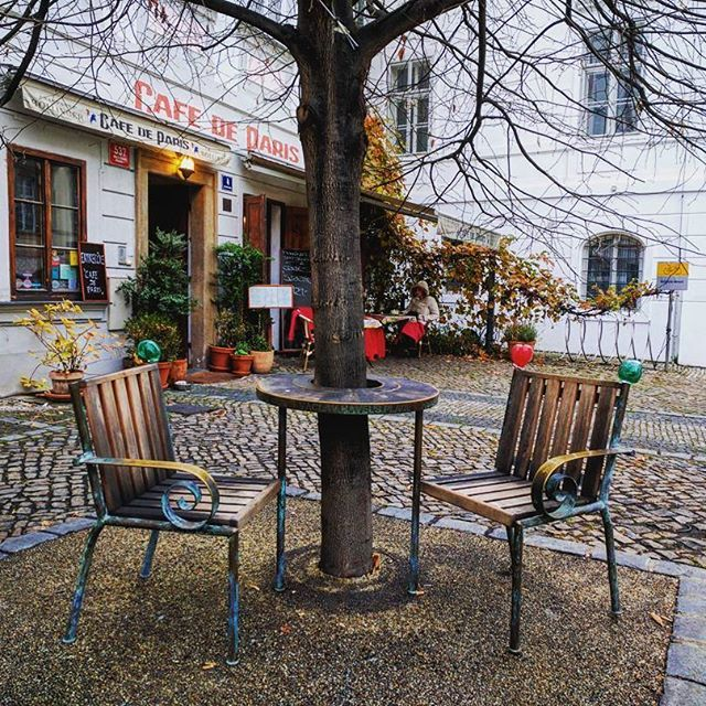 Prague🇨🇿  #prague #praha #czeckrepublic #praguecafe #nature #europe #romanticcafe #travel #explore #europe #trip #europetrip #beatiful #beatifuldestinations #november #capital #czeck #photography #view #photomoment #coolpicture #art #city #citylife #coffe #praguelife #autumn #beatifulview #cafe #cafedeparis #romantic
