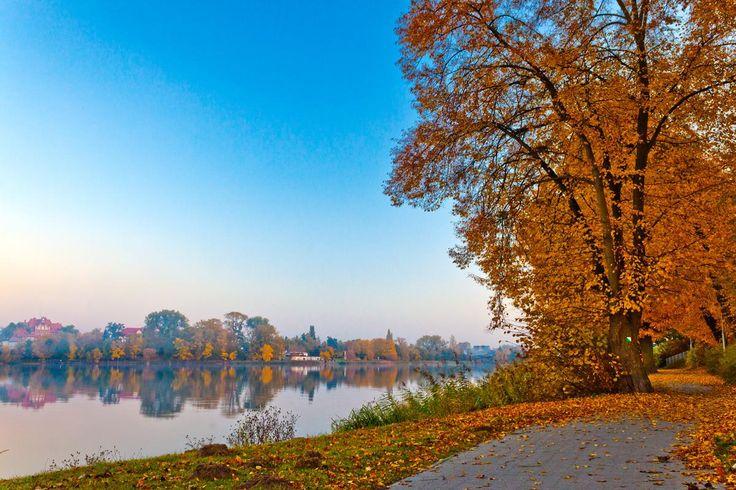 #wagrowiec #wielkopolska #polska #poland #wągrowiec #jeziorodurowskie #lake #autumn #jesien #jesień Fot. Łukasz Cieślak