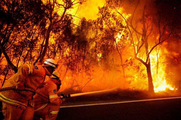 Black Saturday bushfires.