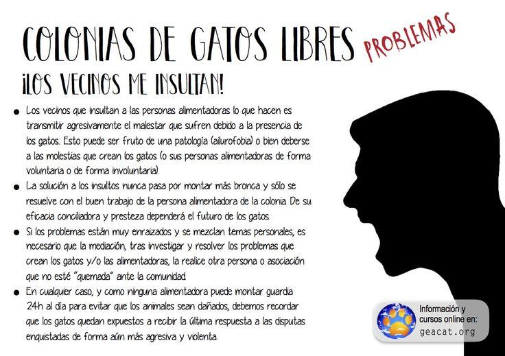 Problema 17: Insultos y agresiones  #CES  #GestiónÉtica  Curso: https://goo.gl/YXAFJC  Pdf:
