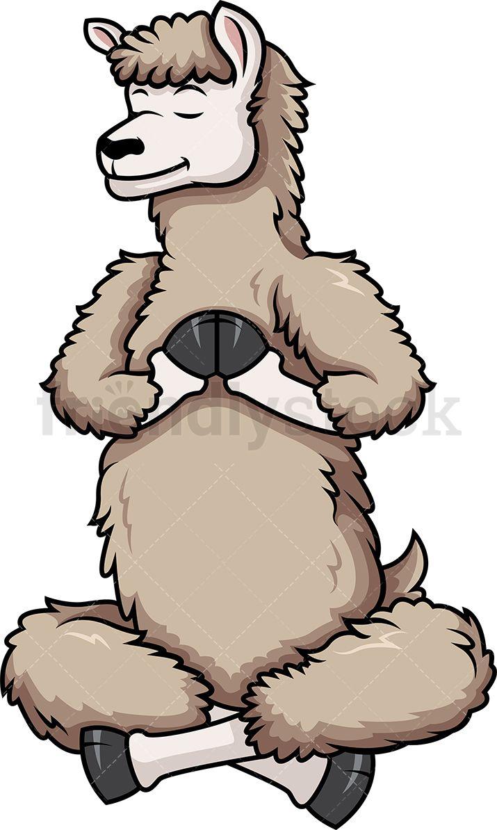 Llama Doing Yoga Cartoon Clipart Vector Friendlystock Yoga Cartoon Cartoon Clip Art How To Do Yoga