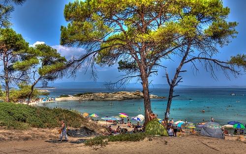 Πεύκα , χρυσή αμμουδιά και γαλαζοπράσινα νερά στην Karidi Beach @Vourvourou , Chalkidiki , GREECE