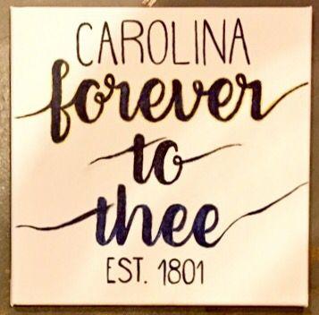 University of South Carolina Canvas! #gamecocks