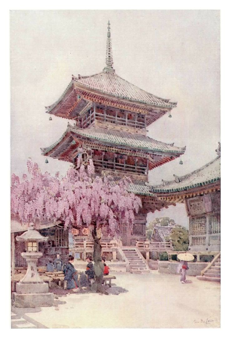 """""""Wistaria, Kyomidzu"""" by Ella Du Cane. One of the first prints in the book """"The Flowers and Gardens of Japan"""".  This print shows some of the beautiful work created by Ella Du Cane as she tours Japan with her sister Florence."""