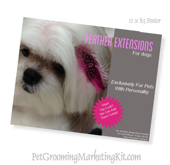 Dog Groomer Posters For Grooming Salons Work Place Pinterest