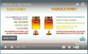 """OK maybe you have heard people talking about Manuka Honey and how special this kind of honey is. But have you ever stopped and asked yourself """"So what exactly is the difference between this Manuka Honey v Raw Honey or Supermarket honey? Click here to learn more. https://au.pinterest.com/pin/find/?url=http%3A%2F%2Faustralianrawhoney.com%2Fmanuka-honey-v-raw-honey"""