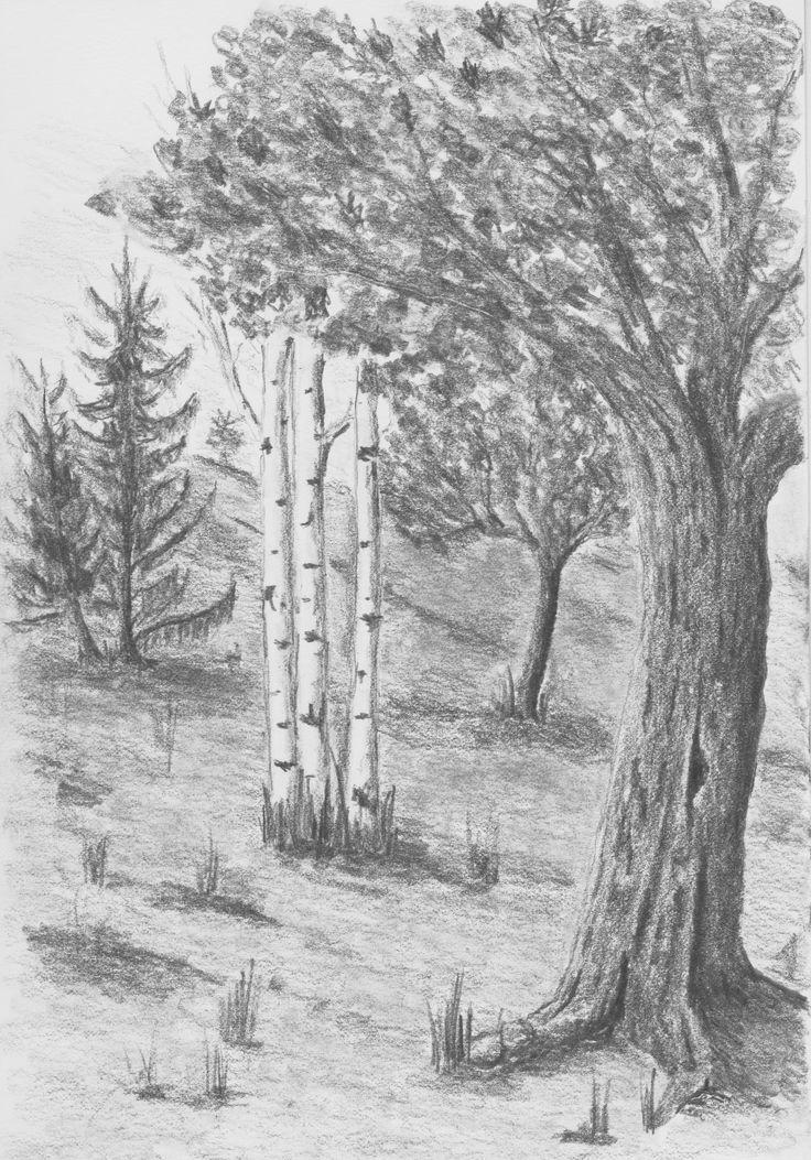 Tree Study by Hester Bondt