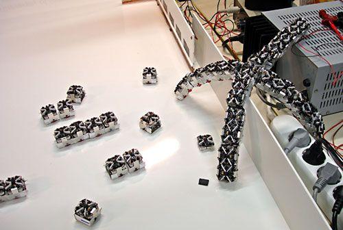 Swarming Robots – The Future of Robotics