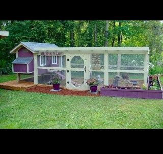 Perfect hen house!!