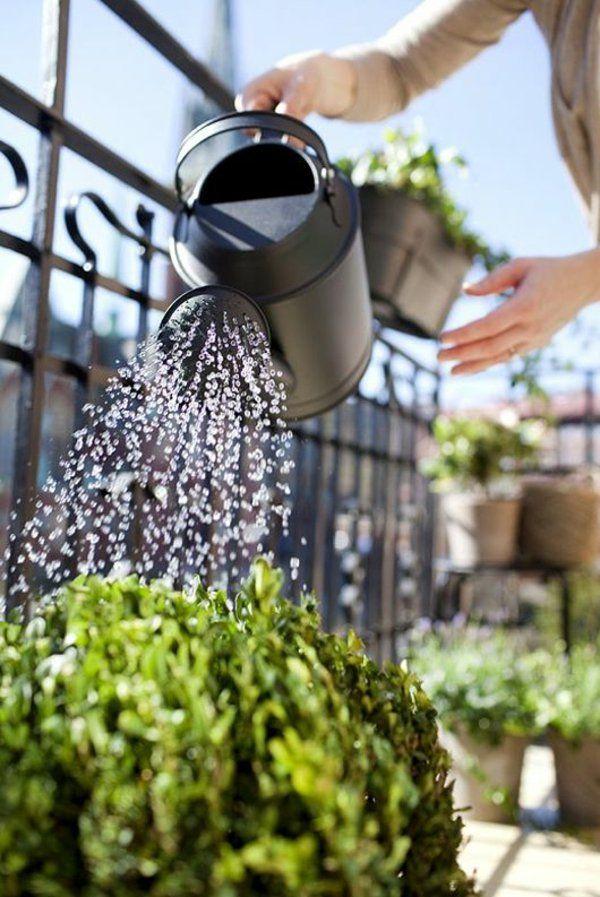 17 Best Ideas About Blumenkästen Bepflanzen On Pinterest ... Terrassenbepflanzung Ideen Beete Gestaltung