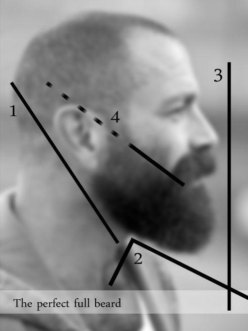 Perfect full beard.